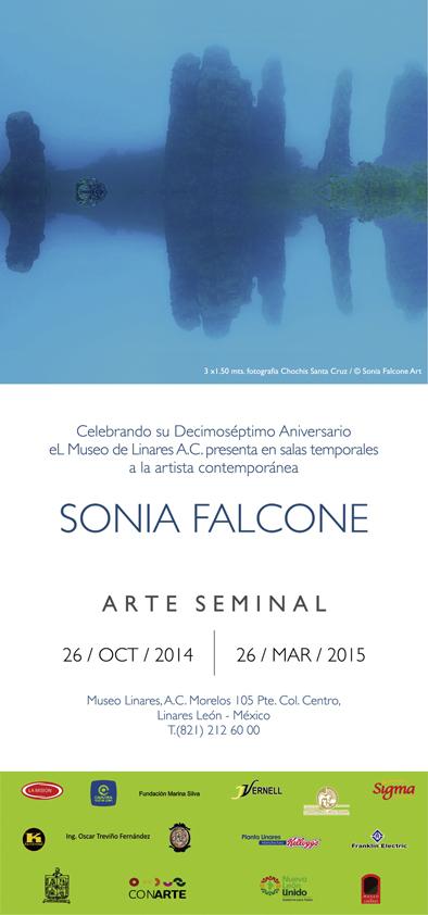 11-arte-seminal-linares-2014